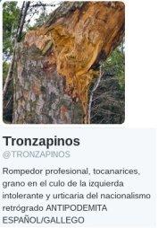 perfil_tronzapinos